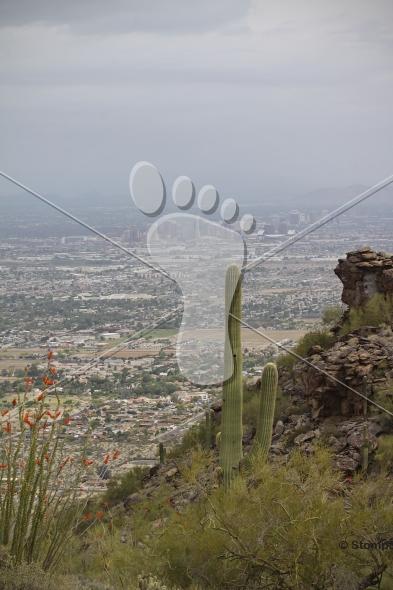 Phoenix Arizona on a Hazy Smog Day